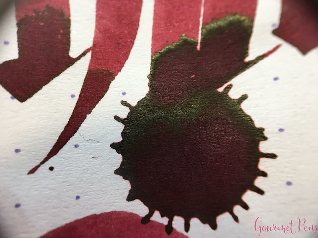 Ink Shot Review Diamine Anniversary Burgundy Royale @AppelboomLaren 9