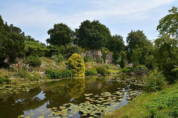 Utrecht-Botanische-Tuinen-19