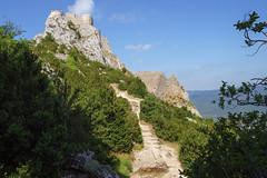 8252 Château de Peyrepertuse