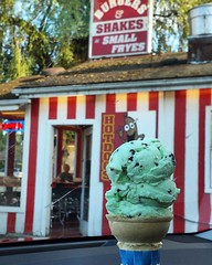 Chocolate Chip Mint The smallest $4.00 ice cream cone I've ever had! Stopped for a rest in Fall City. Got a cone at Burgers and Shakes & Small Fryes. • 6.4.17 • #chocolatechipmint #icecream #smallfryes #overpriced #fallcity #fallcitywa #iatethis #foodphot
