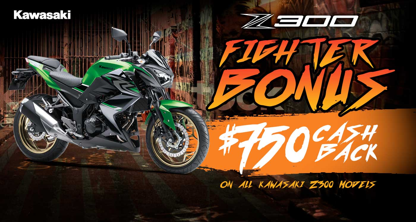 Z300 Fighter Bonus