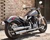 Harley-Davidson 1690 SOFTAIL SLIM FLS 2017 - 15
