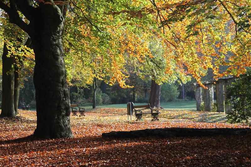 Parques de Gante