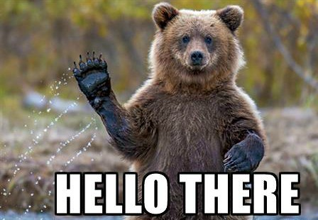 friendly-bear-hello-there (1)