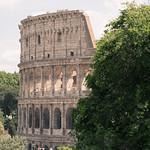Colosseum through the trees