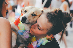 dog supporting lgbt+ rights | milano pride 2017.