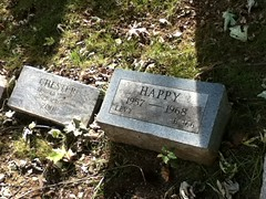 Chester and Happy at Hartsdale Pet Cemetery.