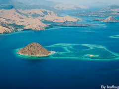 komodo one day Tour