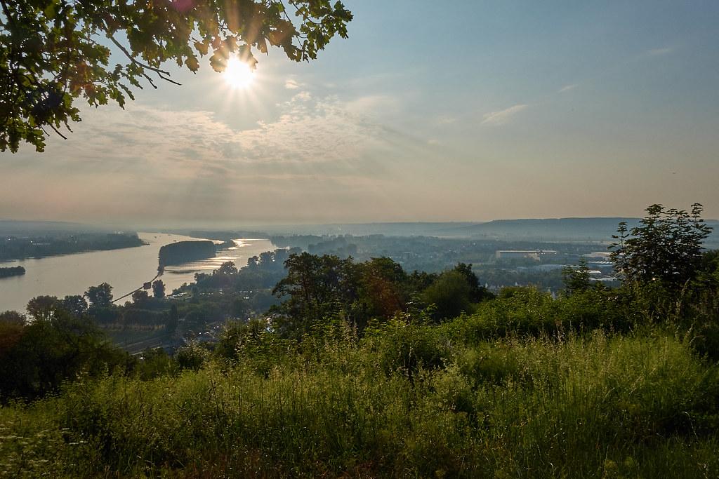 Blick auf den Rhein am Rochuskreuz