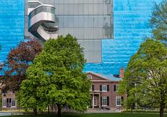 Art Gallery of Ontario from Grange Park