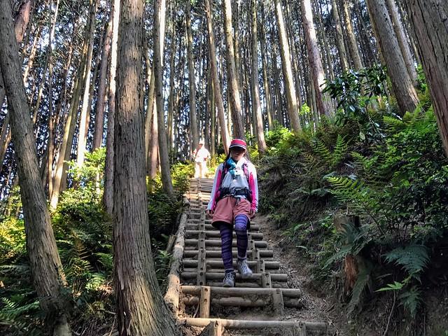 大和葛城山 櫛羅の滝 登山道
