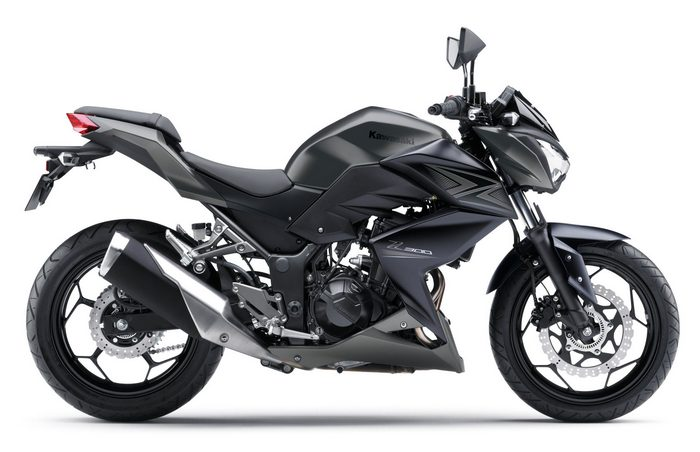 Kawasaki Z 300 2016 - 2