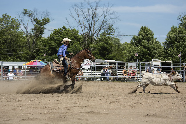 Calf Roping Definition Meaning