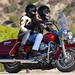 Harley-Davidson 1450 ROAD KING FLHR 2001 - 6