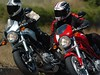 miniature Ducati Monster 1000 S2R 2008 - 9