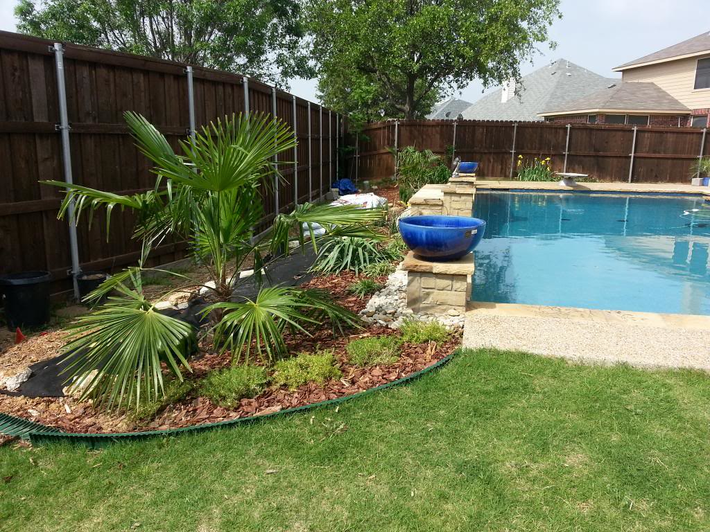 North Texas landscaping ideas needed