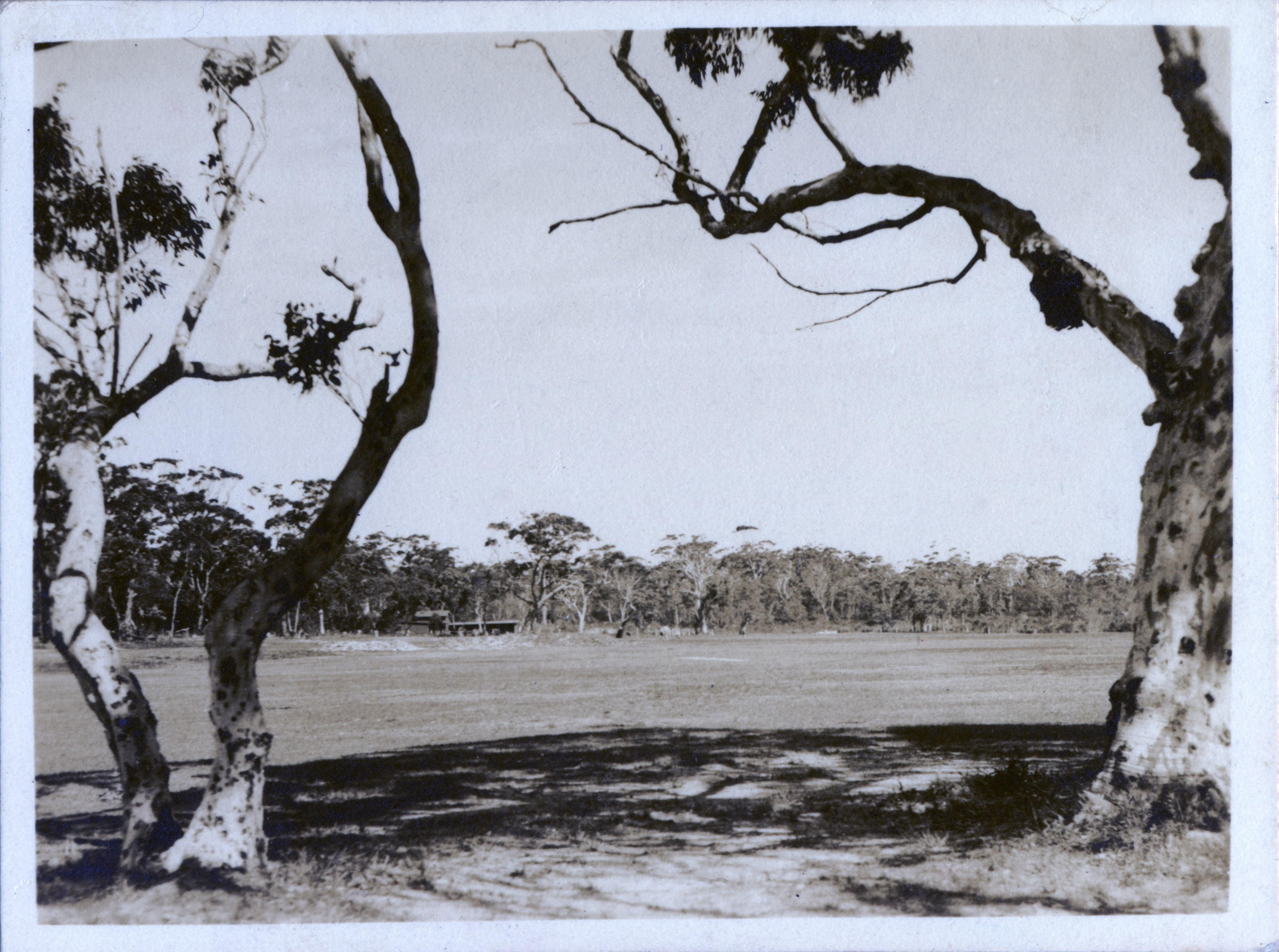 30. Jervis Bay - or a Game of Golf