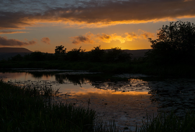 Serene Evening, Nikon D800E, Sigma 50mm F1.4 EX DG HSM