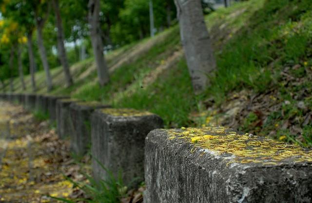 DSC_0565, Nikon D200, AF Zoom-Nikkor 35-135mm f/3.5-4.5 N