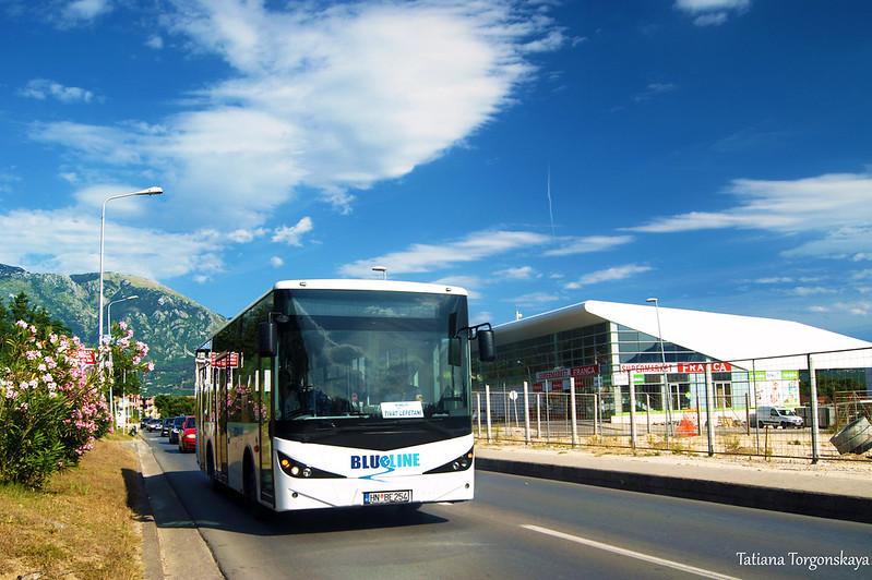 """Автобус """"Blue line"""" едет с тиватской автостанции"""