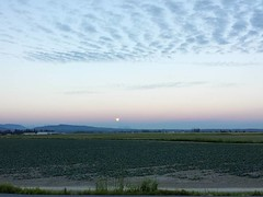 9:08 pm and the rise of the Thunder Moon at it's peak over the hills of Mount Vernon. • 7.8.17 • #thundermoon #fullmoon #daytrip #mountvernon #firislandroad #skagitcounty #pnw #galaxys4
