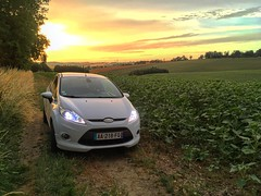 Escapade dans les champs  #car #ride #trip #drive #vehicle #sportcars #spoiler #wheel #road #freeway #ford #fordfiesta #sun #sunset