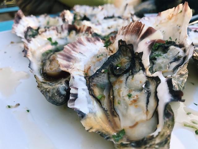 freycinet oysters