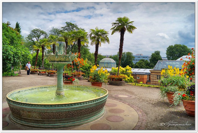 Botanischer Garten in der Wilhelma