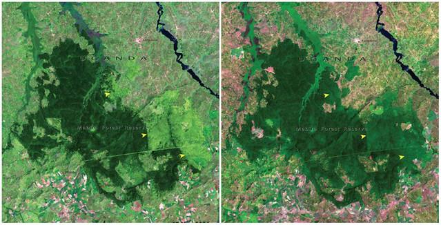 Sự thay đổi cảnh quan trong vòng 100 năm trên toàn thế giới - egolandscape 04