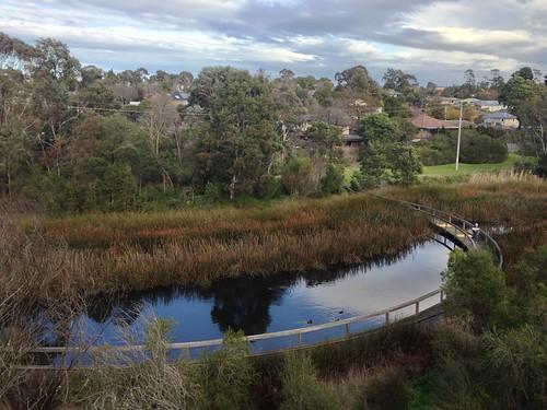 Koonung Creek wetlands