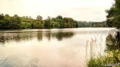 Lac de Robertville (BE)