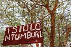 Native trees in Kenya