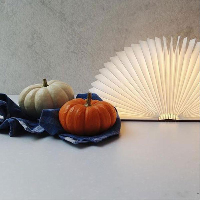 Koleid Classic Liam Book Lamp