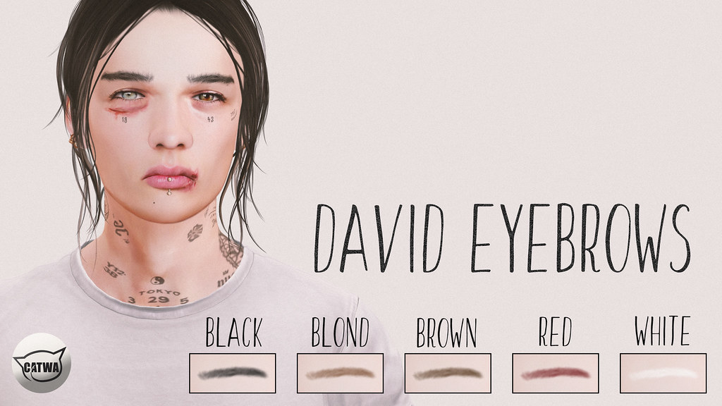 David Eyebrows / Knot & co. Cosmetics - SecondLifeHub.com