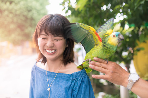 Young woman letting parrot on her shoulder