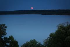 Summer Moon over the Potomac