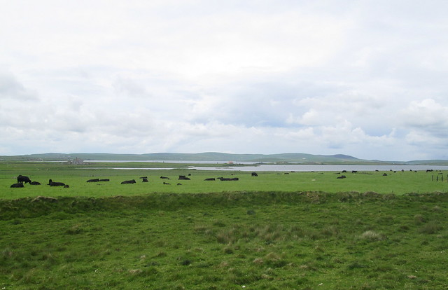 Stenness and Brodgar 2