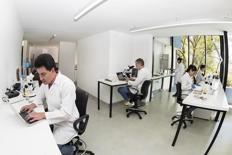 Laboratorio Batracología, Centro Jambatu