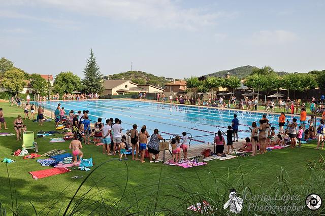 Campeonato de natación 01