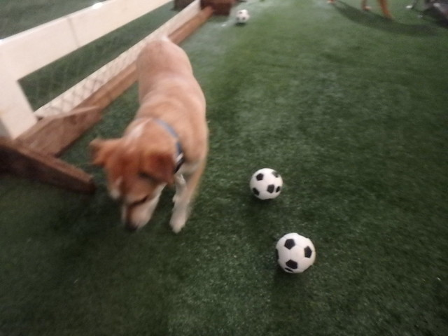 07/01/17 Soccer Play! :D