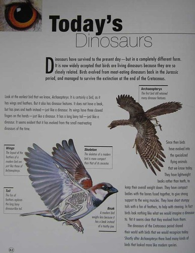 """""""If Dinosaurs Were Alive Today"""""""