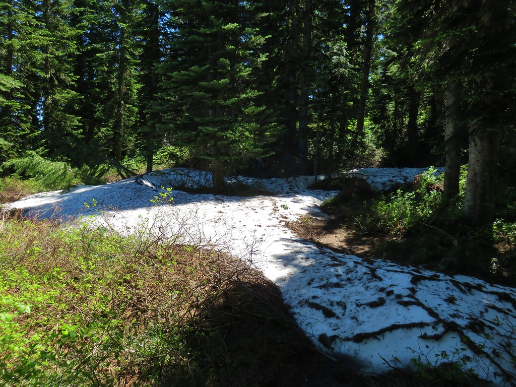 Snow along the Hawk Mountain Trail