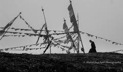 A monk at Chele La