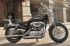 Harley-Davidson XL SPORTSTER 1200 CUSTOM 2017 - 18