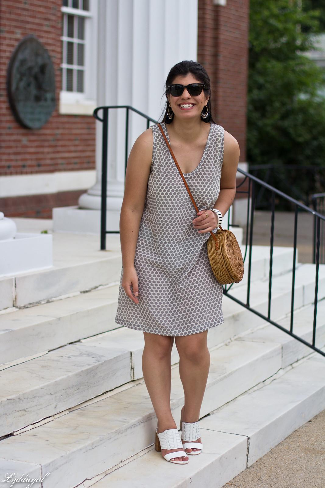 joie cloudburst dress, round straw bag, statement earrings-3.jpg