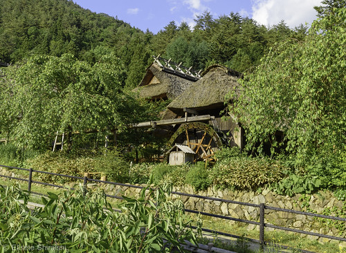 asian asiancontinent iyashinosato japan jp landscape minamitsurugun mountfuji mountain village watermill yamanashi yamanashiken asia countryside cultural daytime fall farm farmers farmland foliage fuji fujigoko healingculture historicancientheritage home houses hutseasonal inaka iyashijapansatovillage japanese japanesestyle kawaguchi kawaguchiko lakesfive landmark mount nature nemba nenba outdoor outdoors postcard rural saiko saikoiyashinosatonenba scene scenery season serenity traditional tranquilscene traveldestination tree trees tribal viewhistorical volcano japão getty gettyimagesjapan gettyjapan gettyimages gassho