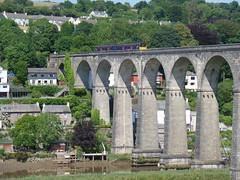 150127 Calstock Viaduct (14)