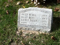 Billy Rebel, Billy Boy and Little Billy at Hartsdale Pet Cemetery.