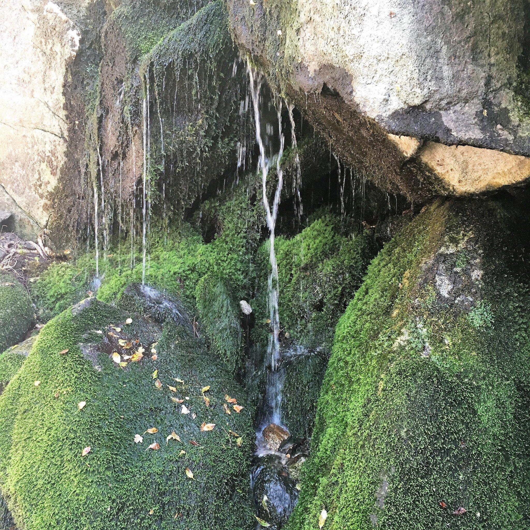 Ferguson Canyon Overlook Water