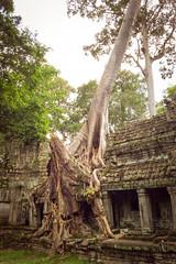 CAMBODIA 2016-44